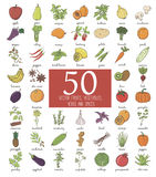 Hand drawn doodle Fruits and Vegetables Stock Images