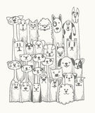 Hand drawn doodle Funny Dogs Set vector illustration