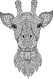 Hand drawn doodle giraffe head illustration Royalty Free Stock Images