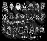 Hand drawn doodle  Insect icon set on Chalkboard eps10. Hand drawn doodle  Insect icon set on Chalkboard Royalty Free Stock Image