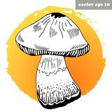 Mashroom. Hand drawn doodle of mashroom on bright gradient autumn background. Isolated  illustration for your designs - logo, banner, poster, print, book Royalty Free Stock Photos