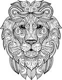 Hand drawn doodle ornate lion illustration Stock Photos