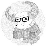 Hand drawn doodle outline cow head decorated with ornaments. Bull in a scarf and glasses. Freehand sketch for adult anti stress coloring book page with doodle Royalty Free Stock Images