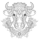 Hand drawn doodle outline cow head Stock Images