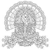 Hand drawn doodle outline turkey Stock Photography