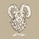 Hand drawn doodle ram Royalty Free Stock Photo