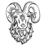 Hand drawn doodle ram Stock Photo