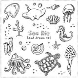 Hand drawn doodle sea life set. Vector illustration. Isolated elements on white background. Symbol collection Royalty Free Stock Images