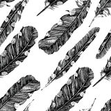 Hand drawn dotted feathers on white background Stock Image