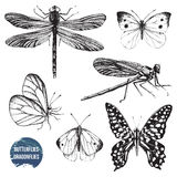 Hand drawn dragonflies and butterflies. Set royalty free illustration