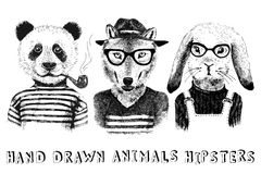 Free Hand Drawn Dressed Up Animals In Hipster Style Stock Images - 70139064