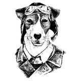 Hand drawn dressed up dog aviator. Hand drawn black and white dressed up dog aviator stock illustration