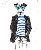 Hand drawn dressed up dog in hipster style Stock Photos