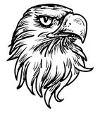 Hand drawn eagle head Stock Image