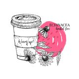 Hand drawn echinacea herbal tea to go. Tea cup, purpurea flower. Vectror engraved art. Healing warm tea in paper cup. Food ingredient, aromatherapy, cooking Royalty Free Stock Image