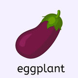 Hand drawn eggplant Royalty Free Stock Images