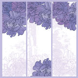 Hand drawn elegance  floral vignette Royalty Free Stock Photography