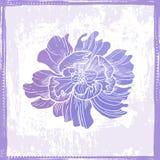 Hand drawn elegance  floral vignette Stock Images