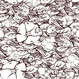 Hand drawn elegant pattern with flowers. stock images