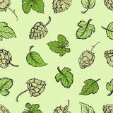 Hand drawn engraving style Hops Seamless pattern. Royalty Free Stock Photos