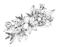 Hand drawn exotic flowers isolated on white background royalty free illustration