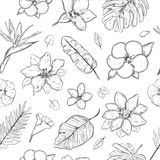 Hand Drawn Exotic Plants Seamless Pattern Stock Photo