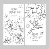 Hand Drawn Exotic Plants Vertical Banners Royalty Free Stock Images