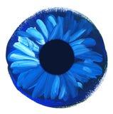 Hand drawn eye iris. painted shabby concept eyes Royalty Free Stock Photos