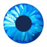 Hand drawn eye iris. painted shabby concept eyes Stock Photography