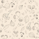 Hand drawn fall acorns, rowan and rosehip berries, tansy flowers Royalty Free Stock Photo