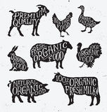 Hand Drawn Farm Animal Set Stock Photos