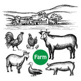 Hand Drawn Farm Set. With village house and livestock animals  vector illustration Stock Photography