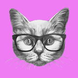 Hand drawn fashion Illustration of Cat. Vector  elements Stock Photos