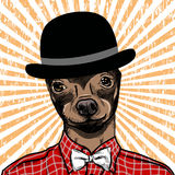 Hand Drawn Fashion Illustration of dressed up english Toy Terrier, in colors. Vector Stock Image