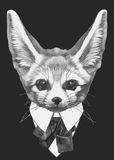 Hand drawn fashion Illustration of Fennec Fox. Vector isolated elements Stock Images