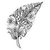 Hand drawn feather stock illustration