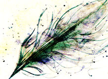 Hand drawn feather and  drops on paper texture, varicolored tint Stock Images
