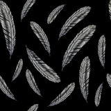 Hand drawn feather illustration. Feather pattern on black background. Hand drawn feathers illustration. Feather pattern on black background Stock Photography