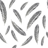 Hand drawn feather illustration. Feather pattern on white background. Hand drawn feathers illustration. Feather pattern on white background Royalty Free Stock Image