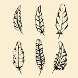 Hand drawn Feather set. Outline silhouette feather vector illustration Stock Photo