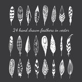 24 hand drawn feathers on black background. Stock Photos