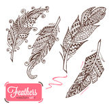 Hand drawn feathers Royalty Free Stock Photos