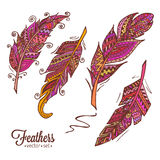 Hand drawn feathers 2 Stock Image