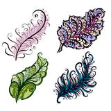 Hand-Drawn Feathers Stock Image