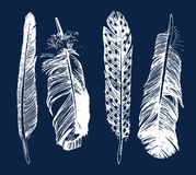 Hand drawn feathers set Royalty Free Stock Image
