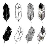 Hand drawn feathers set Stock Images