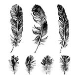 Hand drawn feathers set Royalty Free Stock Photo