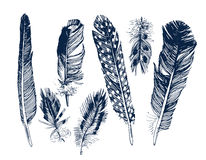 Hand drawn feathers set Stock Photography