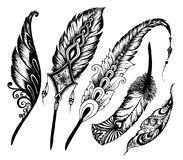 Hand drawn feathers set on white background. Royalty Free Stock Images
