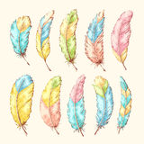 Hand drawn feathers Stock Photography